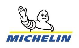 SUBFAMILIA DE MICHE  Michelin
